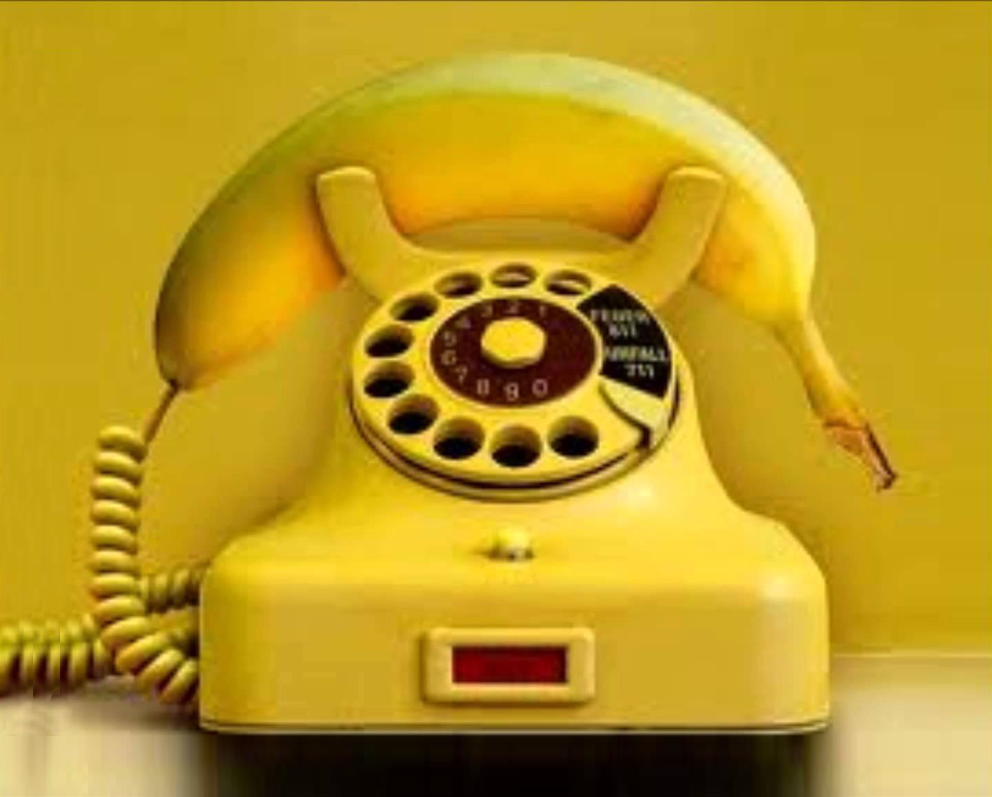 Contact by phone?