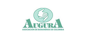 Main Sponsors: Augura